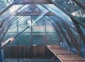 Greenhouse and polytunnel cleaning image